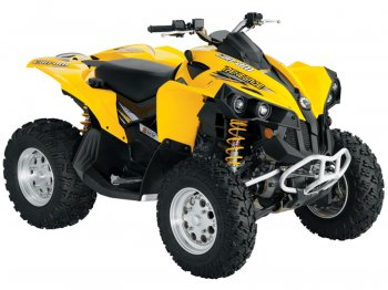 Защита BRP(Can-Am) Renegade 800 (Рама G1)